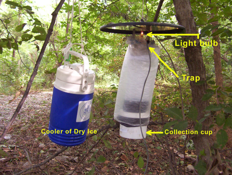 CDC Light Trap
